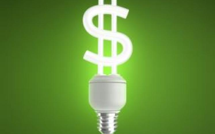 bulb money
